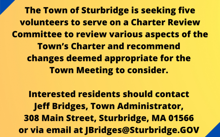 Image of flier for Charter Review Committee search